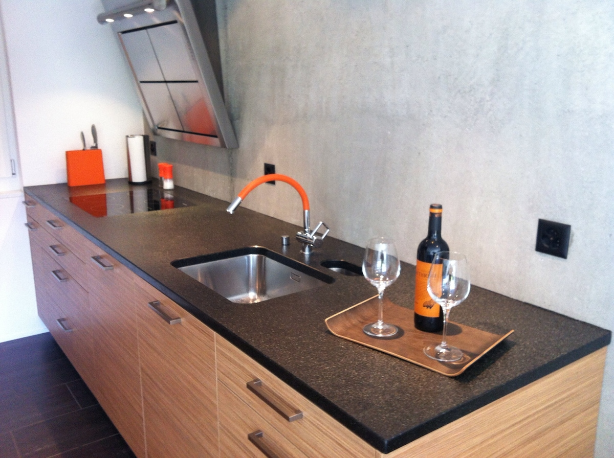 kitchen, fully equipped with oven, steamer, dish washer etc.