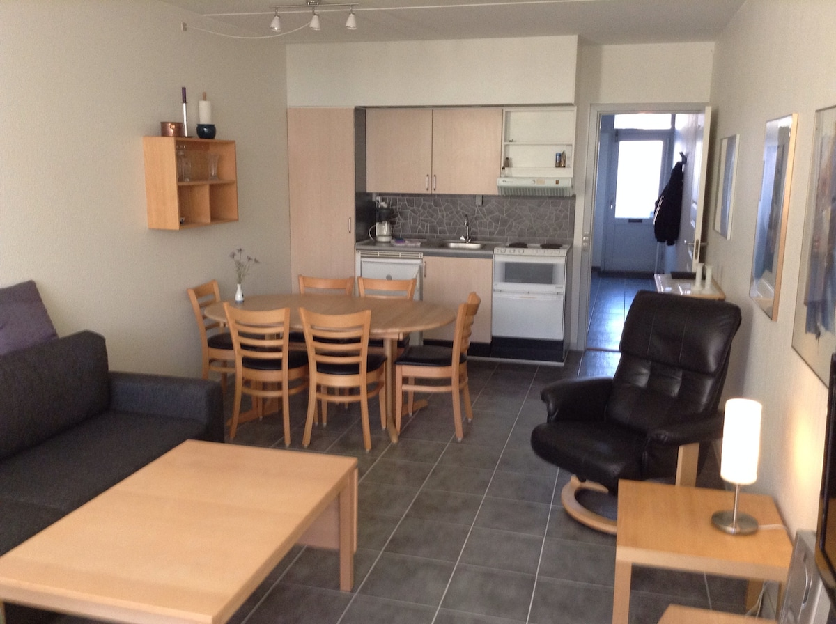Apartment in the South Islands Faab