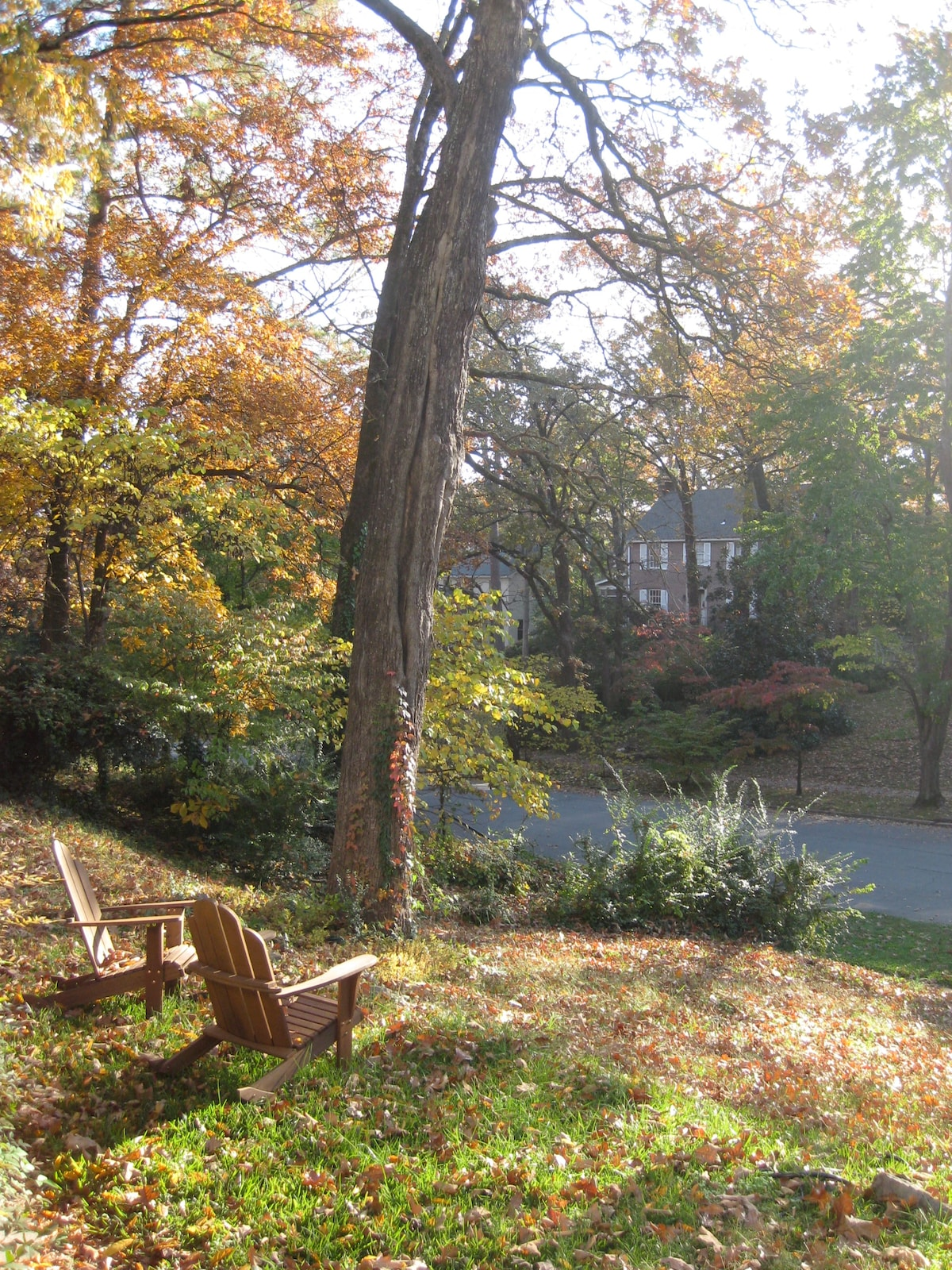Enjoy the Adirondack chairs in the front yard...