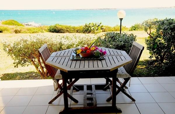 Grand Studio avec Terrasse vue mer