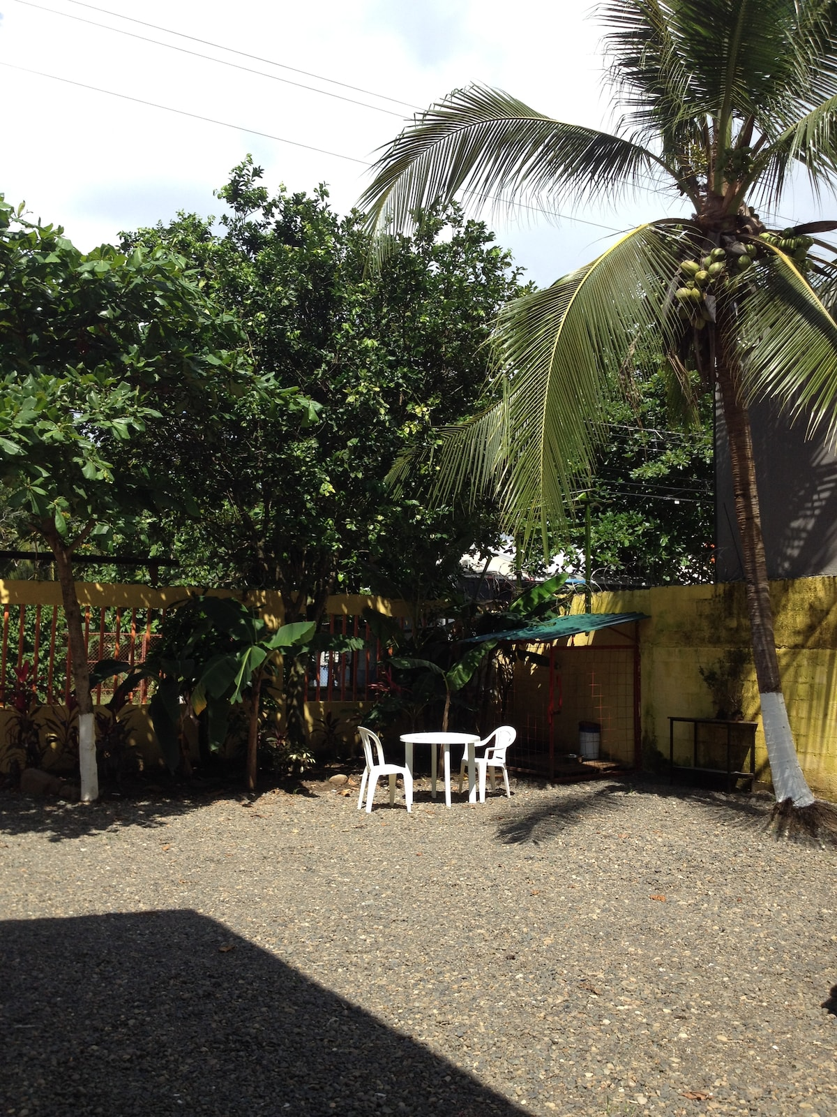 Parking area with coconuts and green area!
