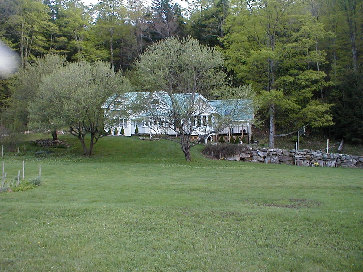 Mtn Valley Retreat - Qn with Spring