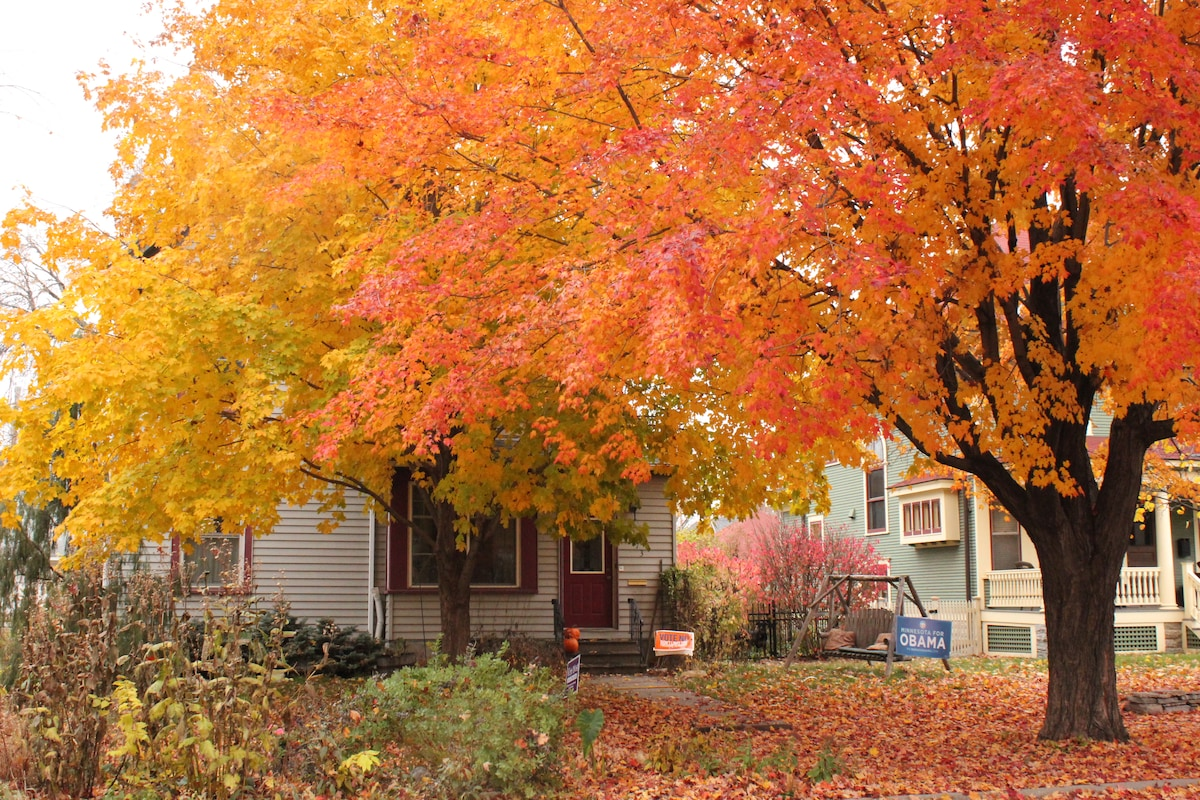 Street view - beautiful Merriam Park home.