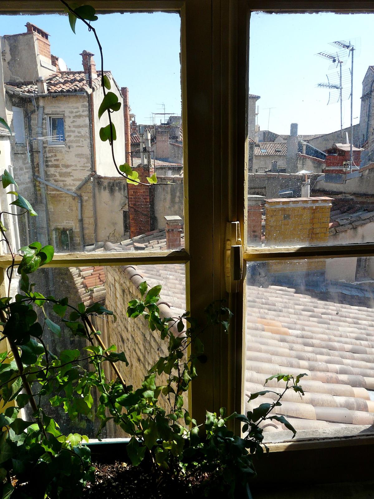 Vue sur les toits (entrée)