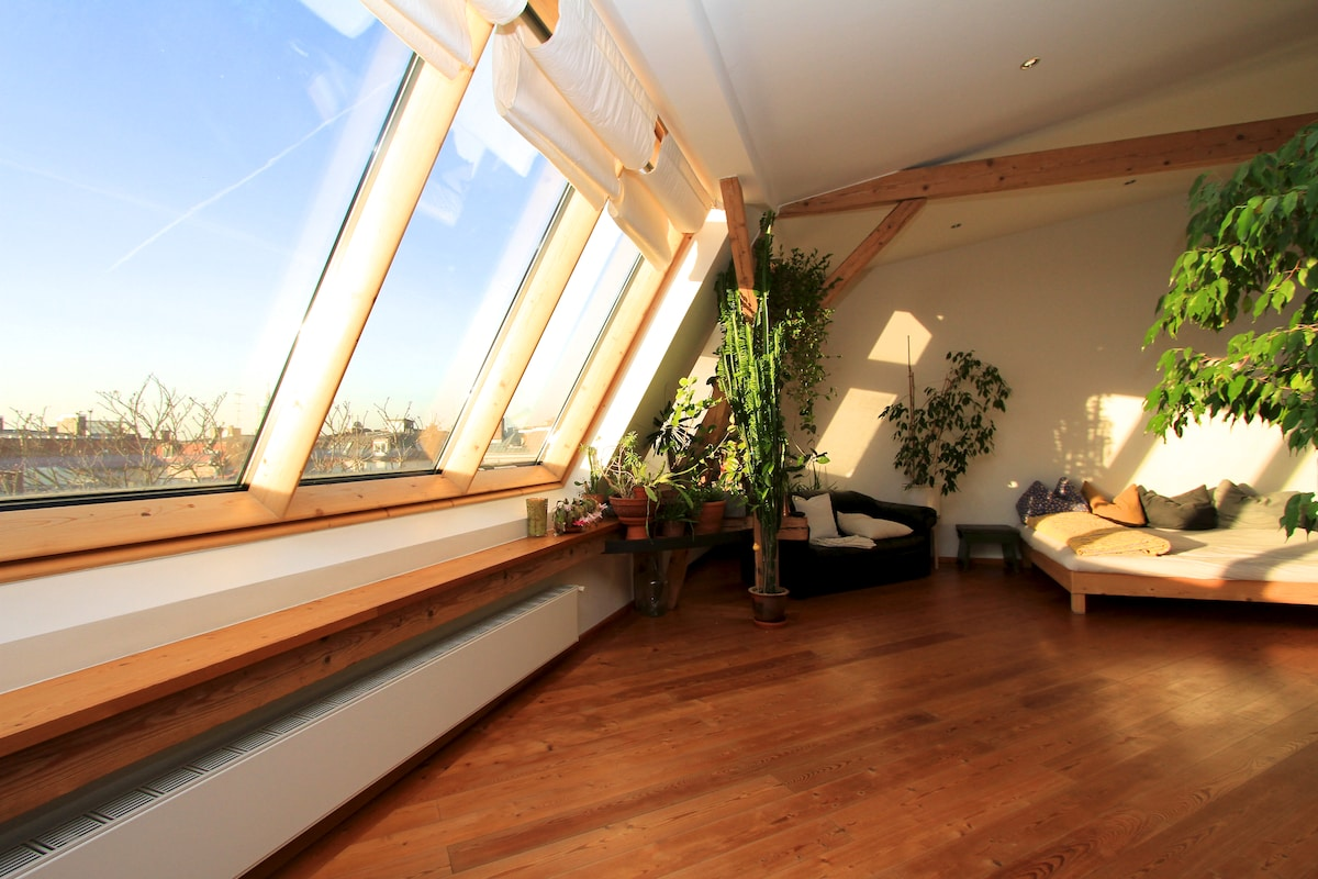 Beautiful Attic Floor Dwelling