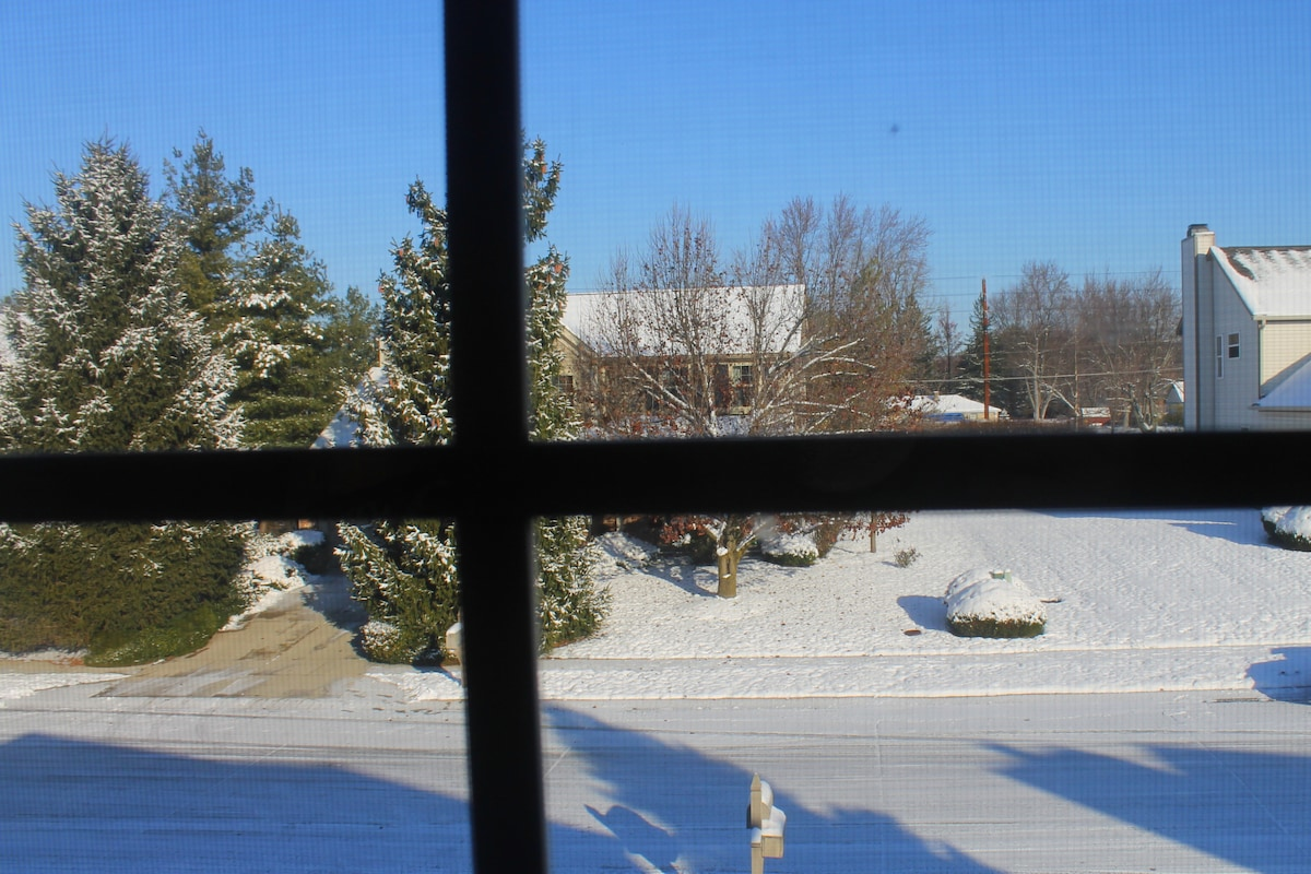 Guest Room View Winter