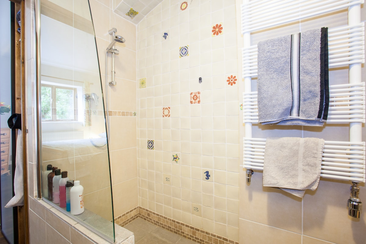 Bathroom with walk-in power shower (instantaneous gas heated)