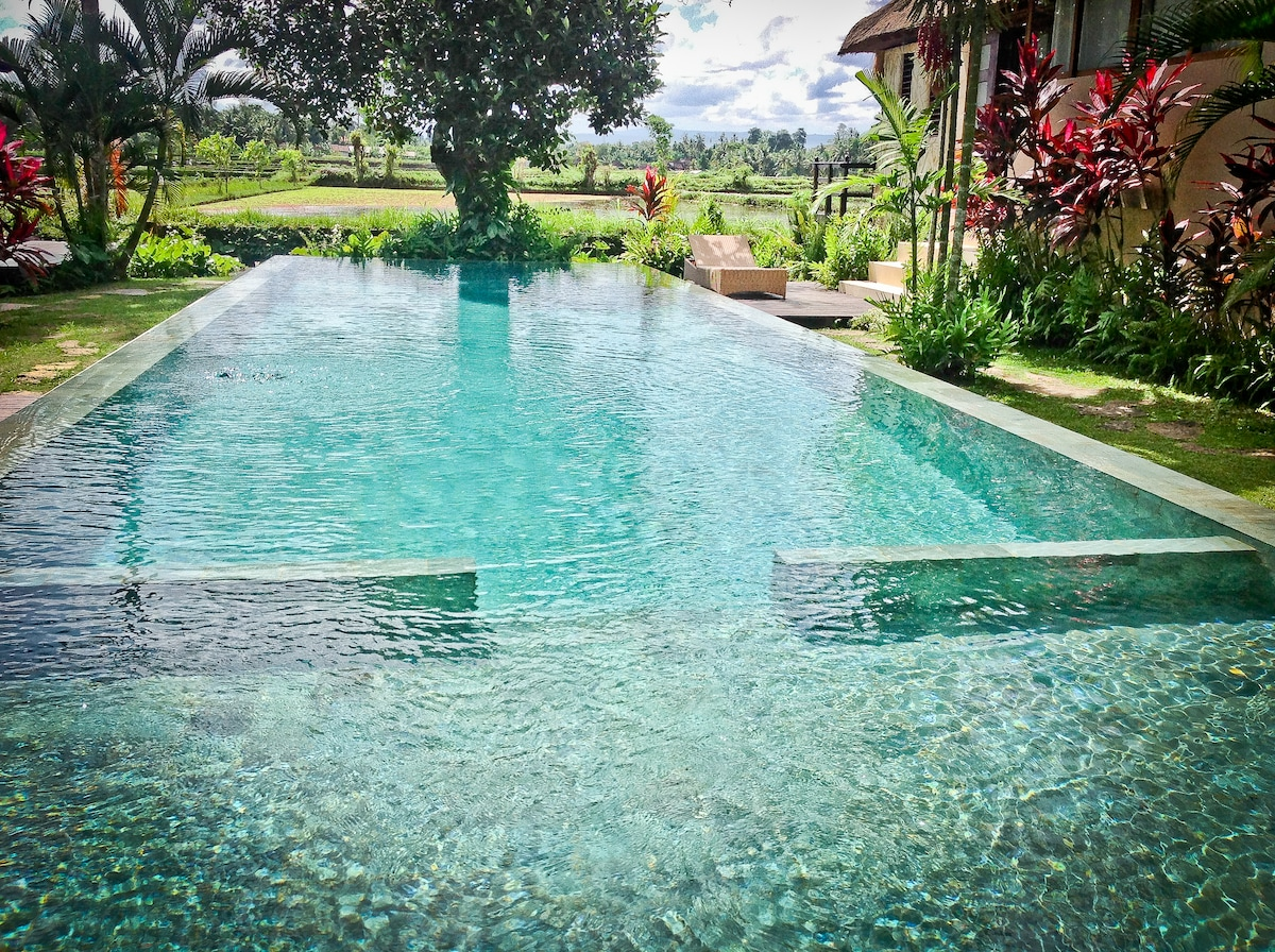 Stunning infinity pool shared by several villas in the Matahari complex