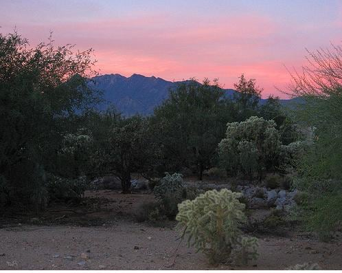 Enjoy AZ-Great Sunsets-Pet Friendly