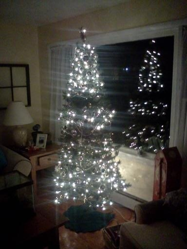 Twinkle, twinkle little tree......you should come on up and ski!
