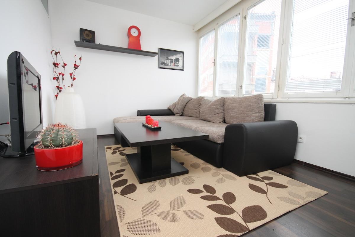 Elegant Apartment in the Center