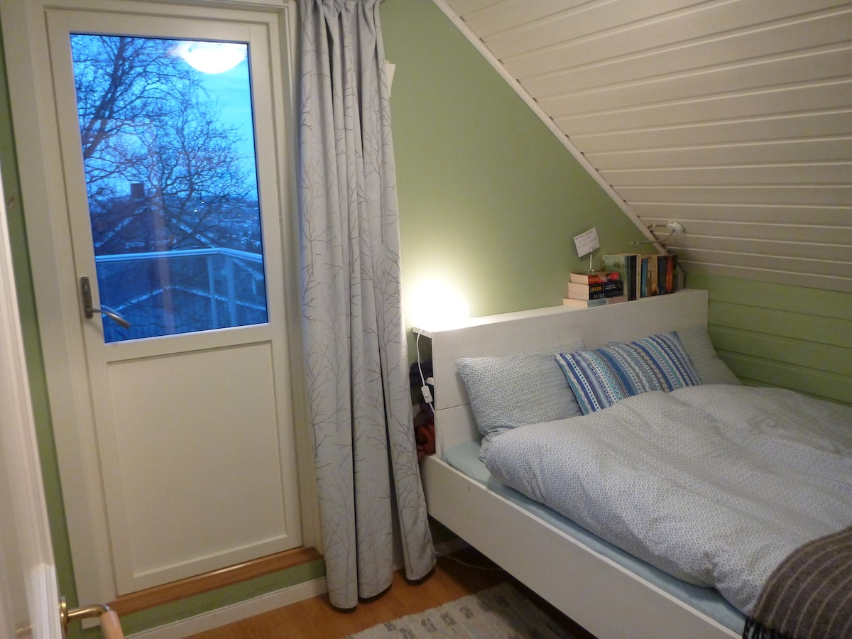 Your room, with queen size bed and exit to roof deck.