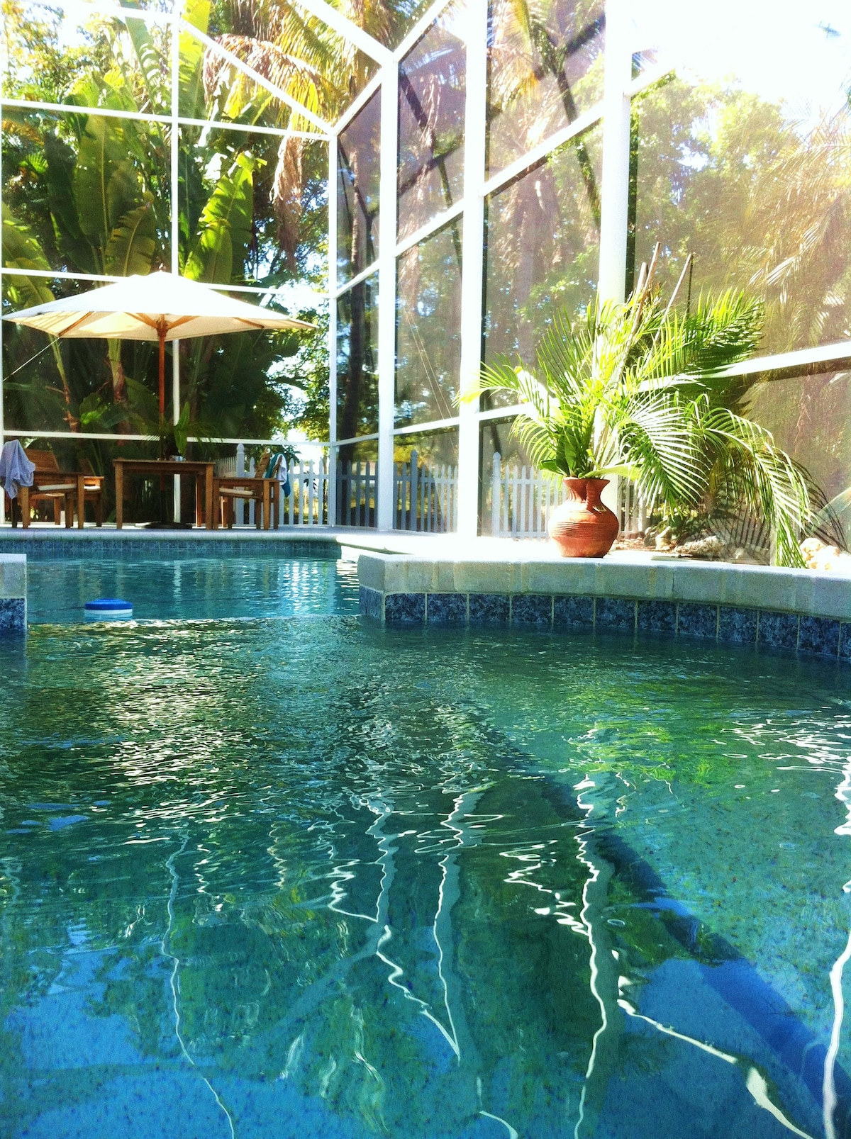 Pool & Spa combo with teak patio dining table.
