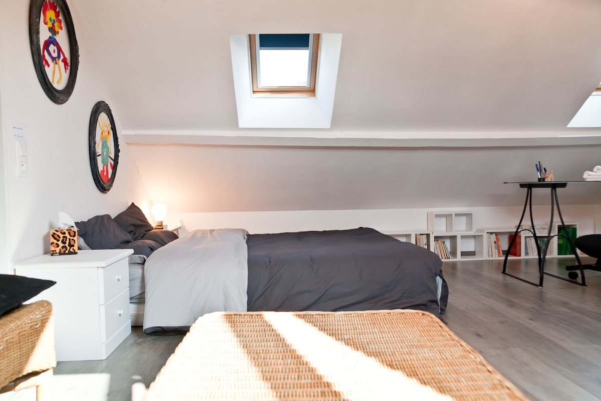 Two spacious rooms in Nantes (FR)