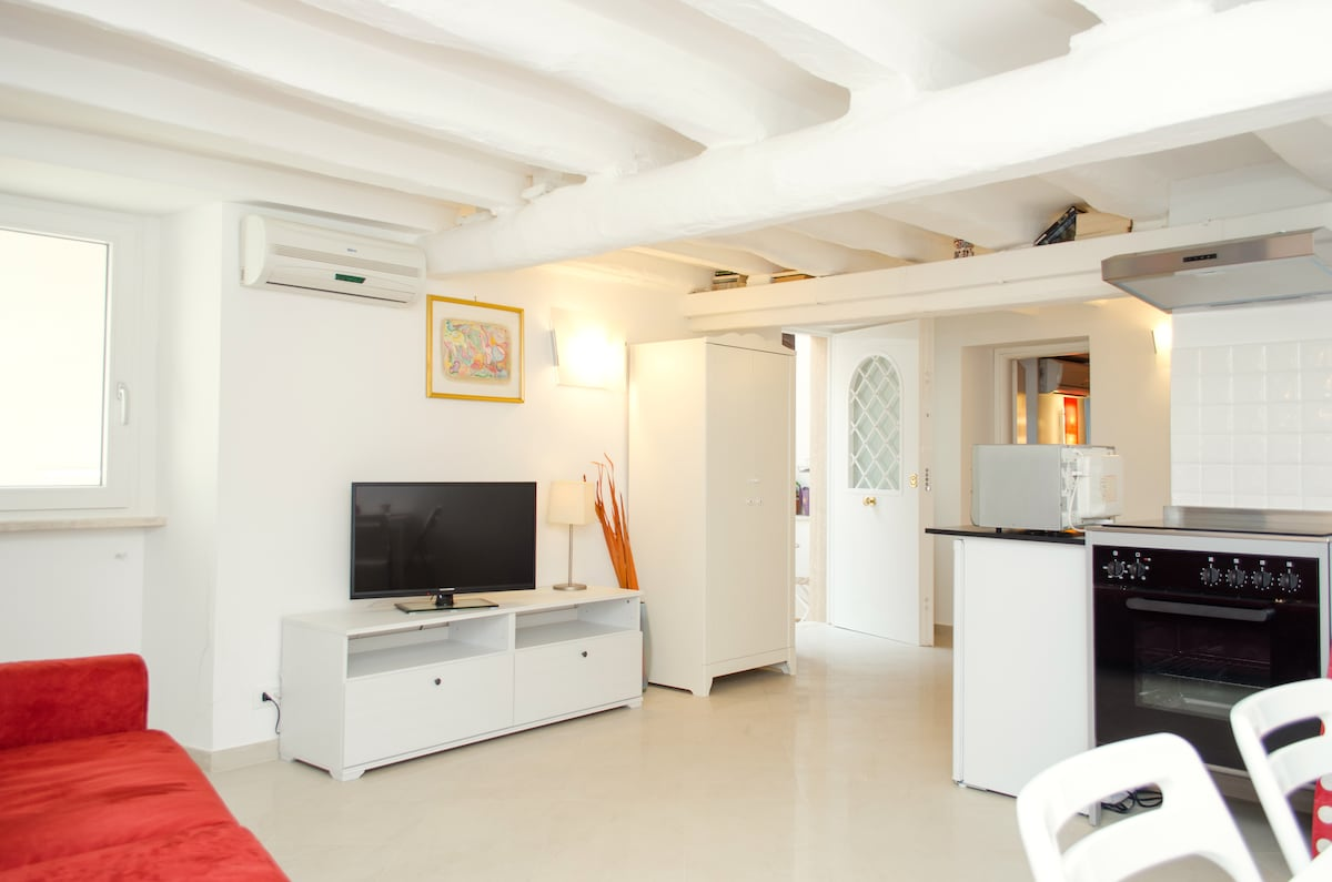 Charming apartment in the Pantheon