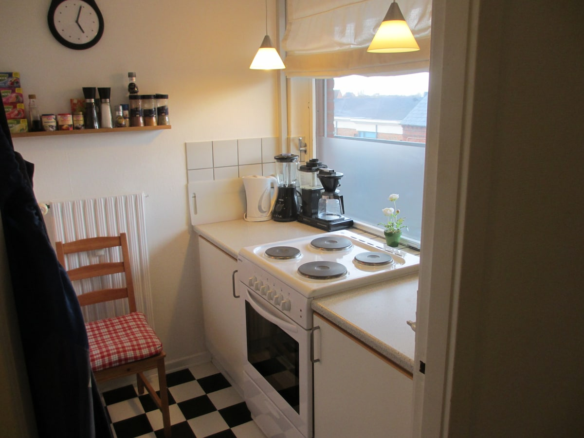 Spacious 1-room apt. in Odense