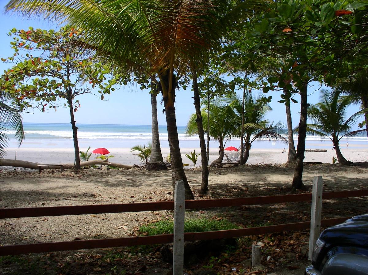 Playa Carmen's BEST