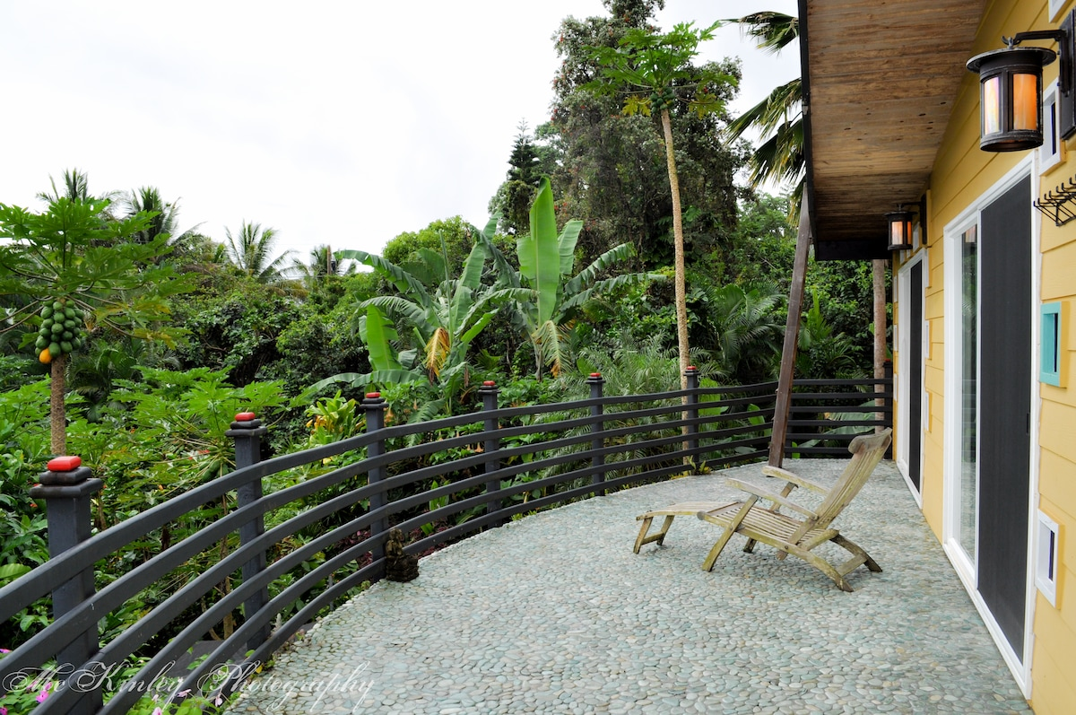 Front patio overlooking the fruit jungle