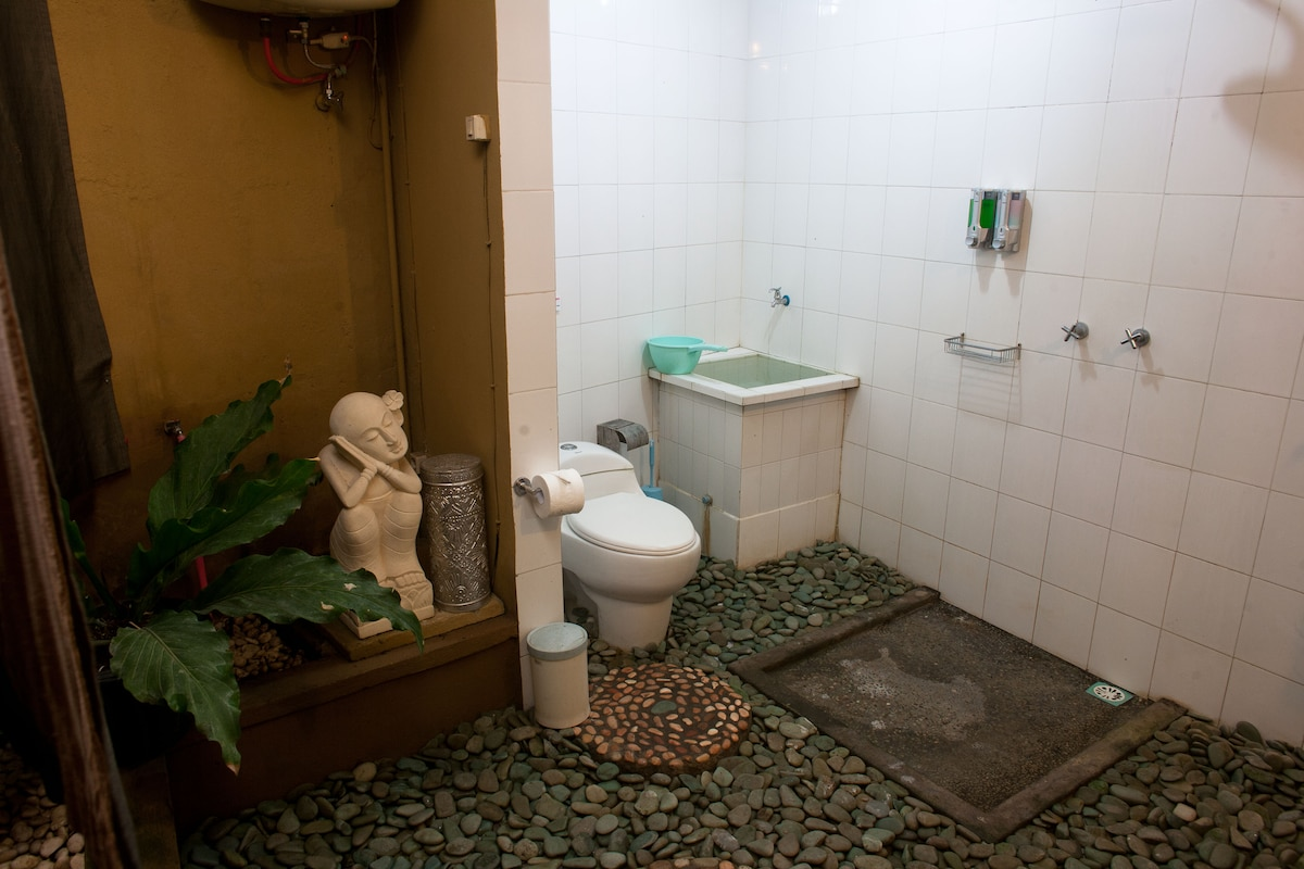 The bathroom (shared with one other room)