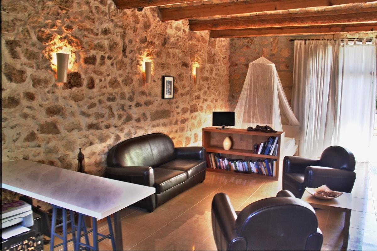 grand studio en pierre en Languedoc