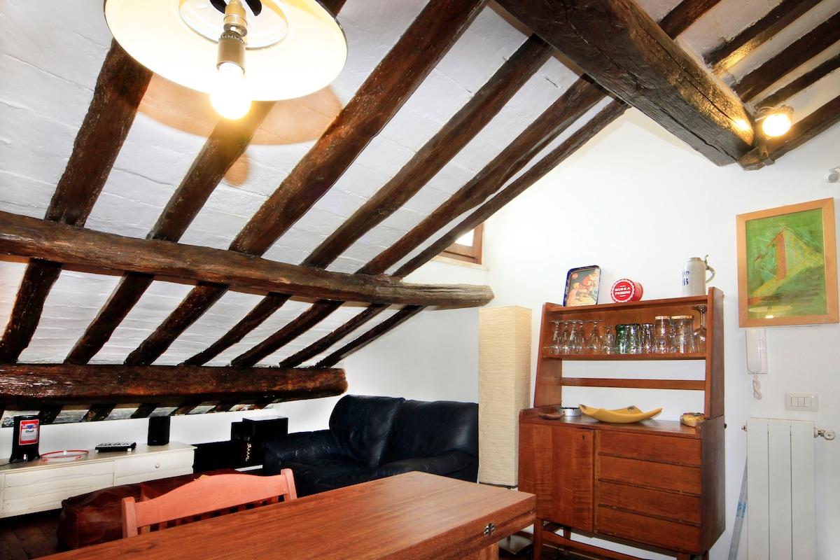 Loft in the center of Frascati