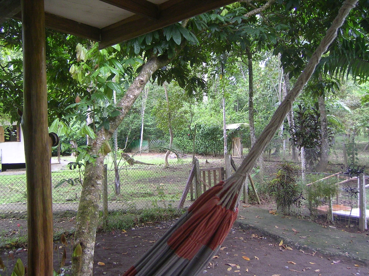 Watch nature from your hammock