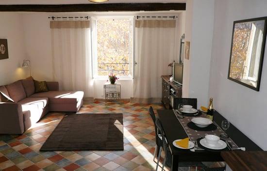 Large 1 bedroom apartment-Oliviers