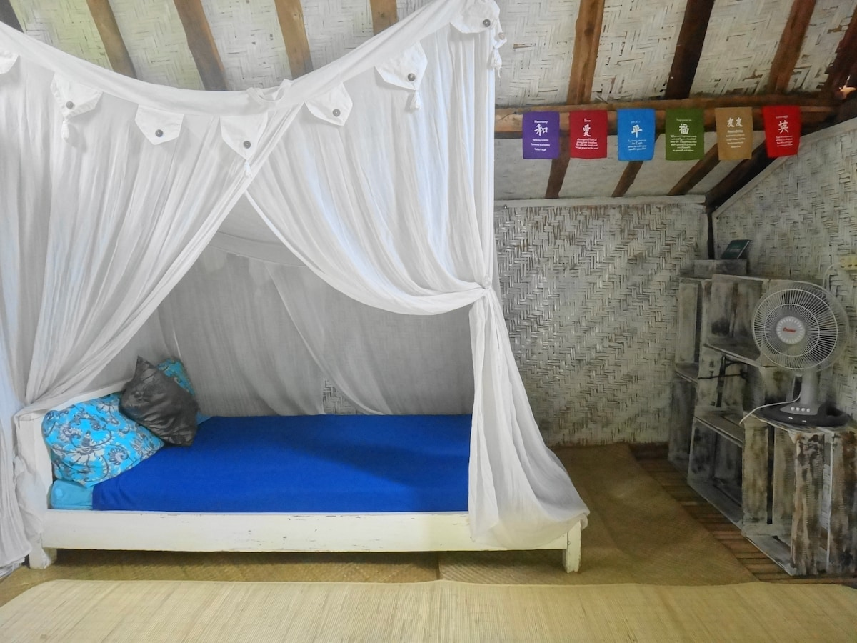 the cozy bed with mosquito net
