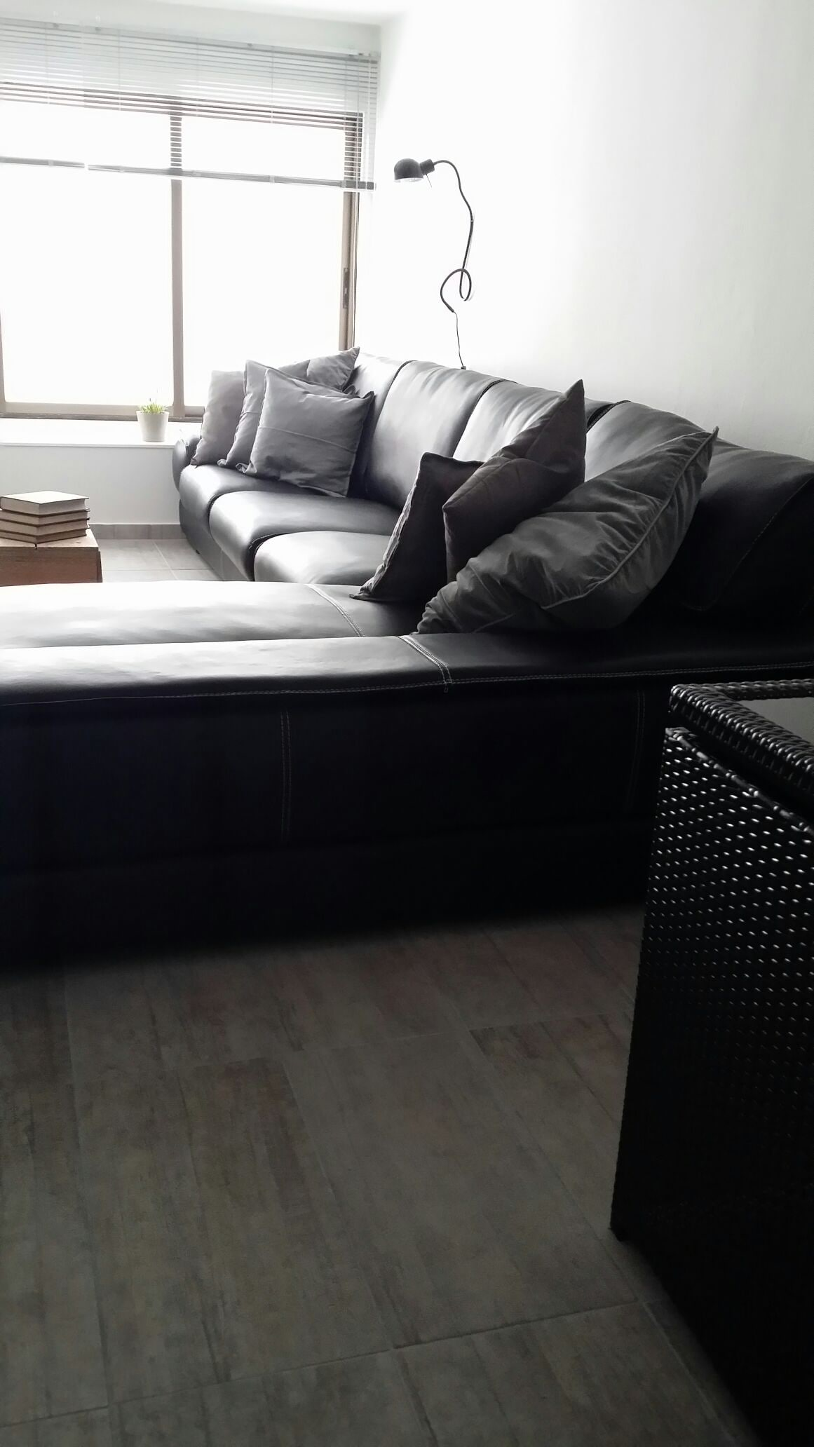 Lush, comfortable couch