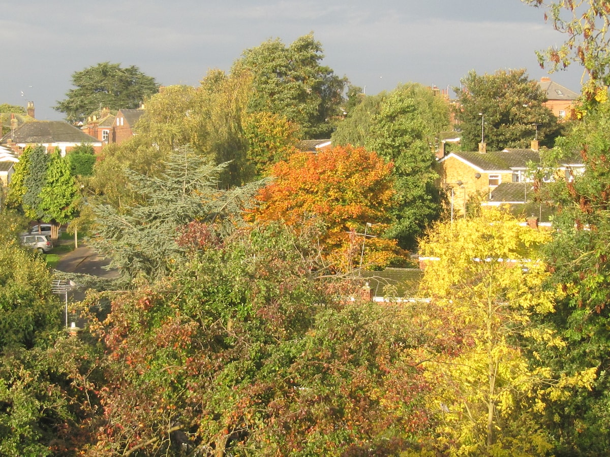 View from the guest room, early autumn.