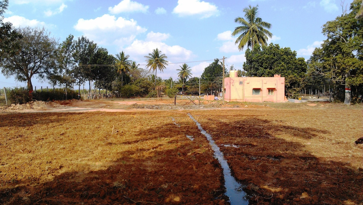 Stay at Farm House with Nature BLR