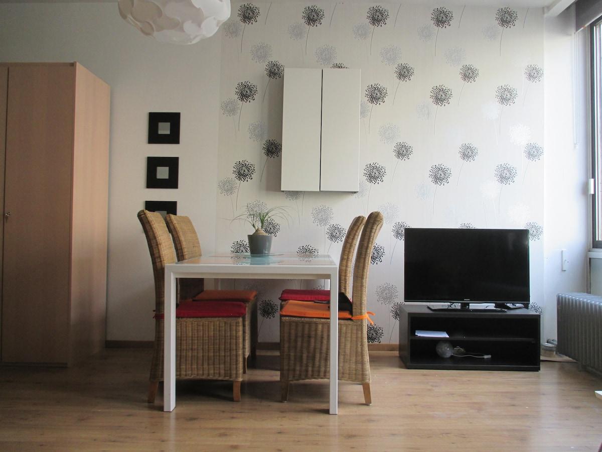 cosy appartment in Antwerp