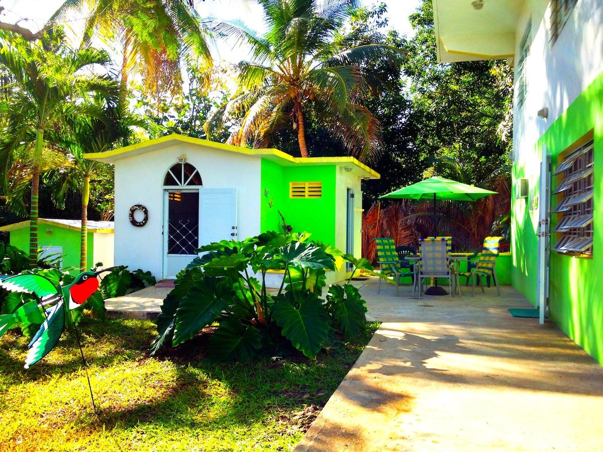Bunk House & Main House Apt. Patio Area