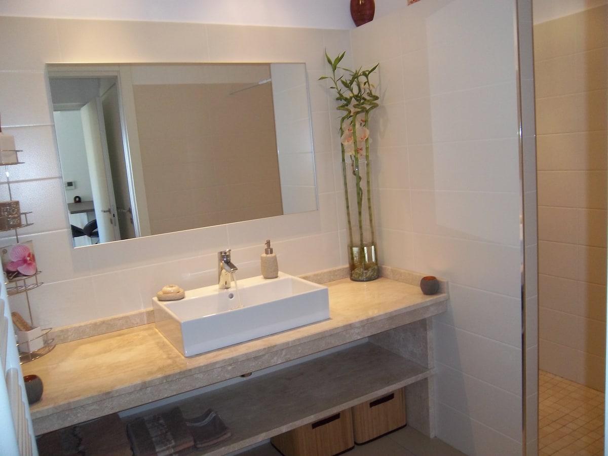 Salle de bain avec plan en marbre et douche à l'italienne