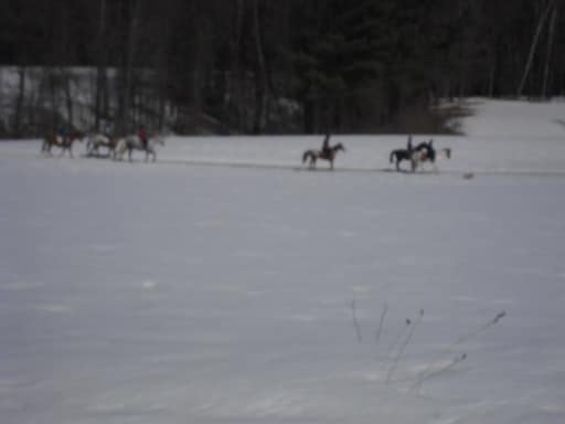 Horseback riders traverse the field in front of our BnB.
