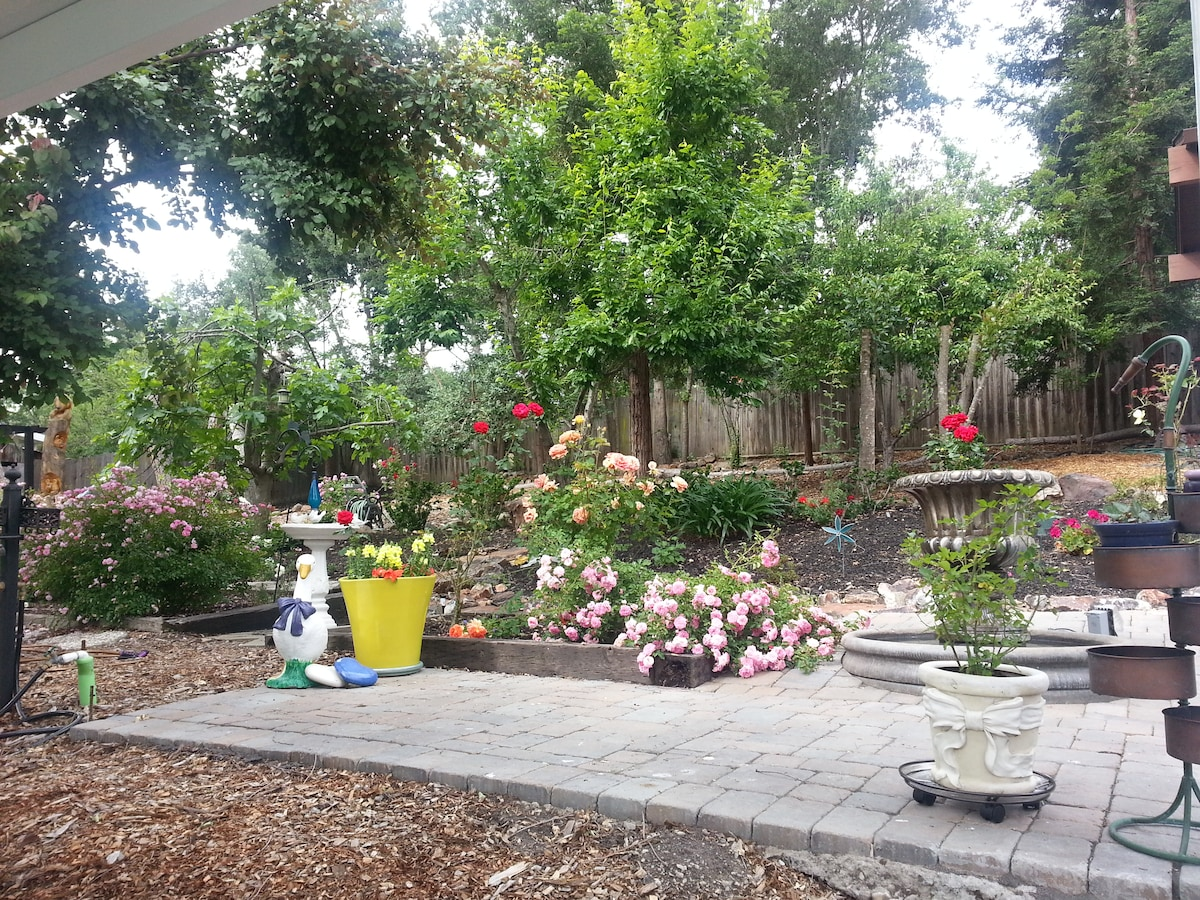 Backyard with fountain, birdbath, bird feeders, and lots of trees and flowers blooming in Spring 2014