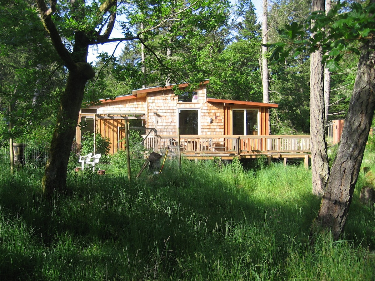 Cabin set in  naturalists haven