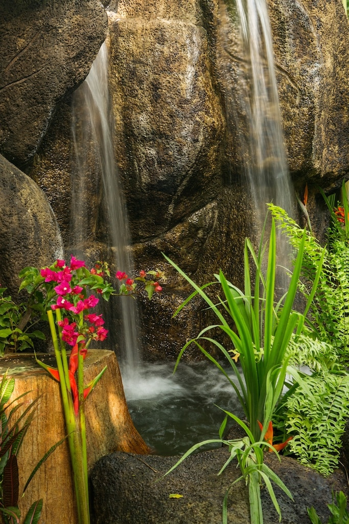Our newest addition, a lovely waterfall, let the sound of moving water relax you