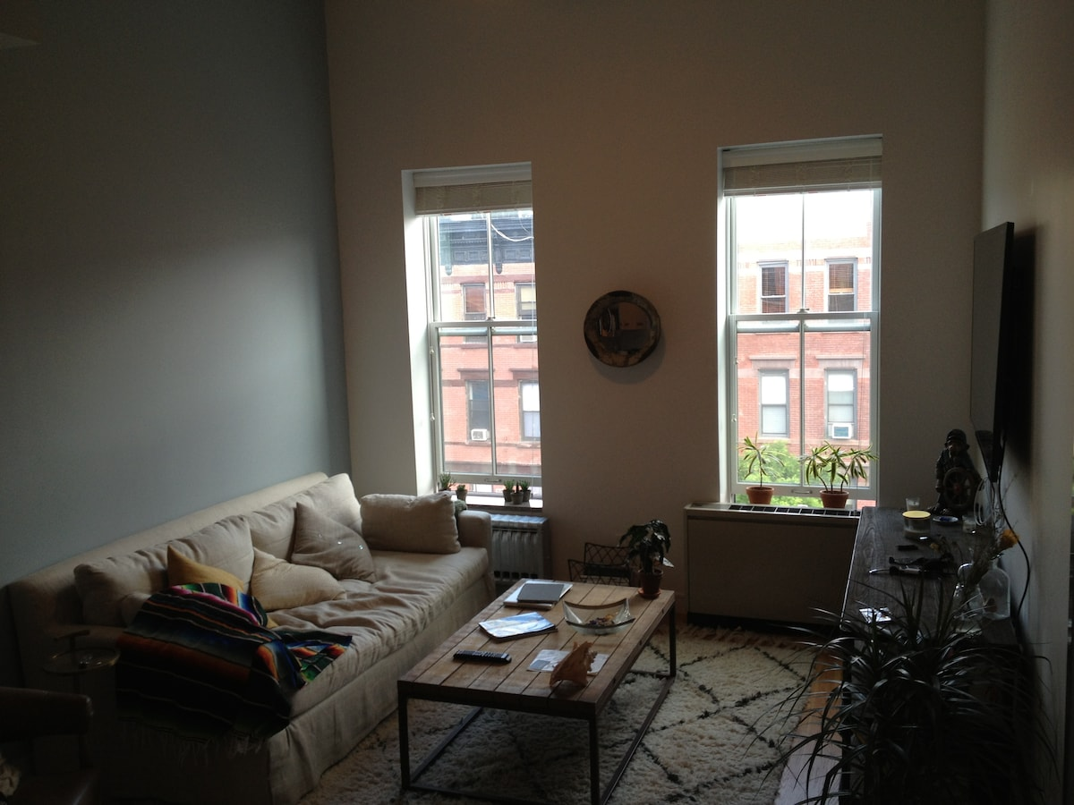 Monstrous Greenpoint 1 BR Apartment