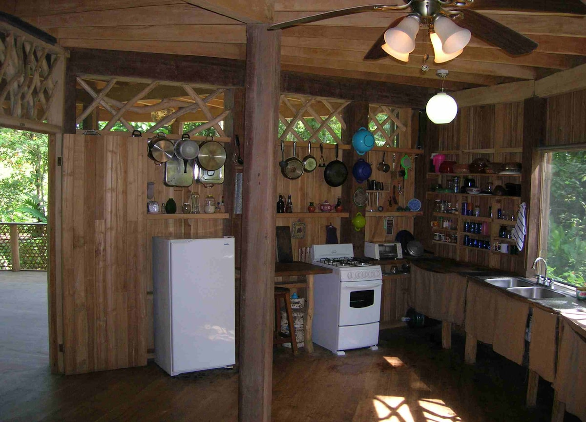Spacious, well-equipped kitchen with open view of the surrounding forest