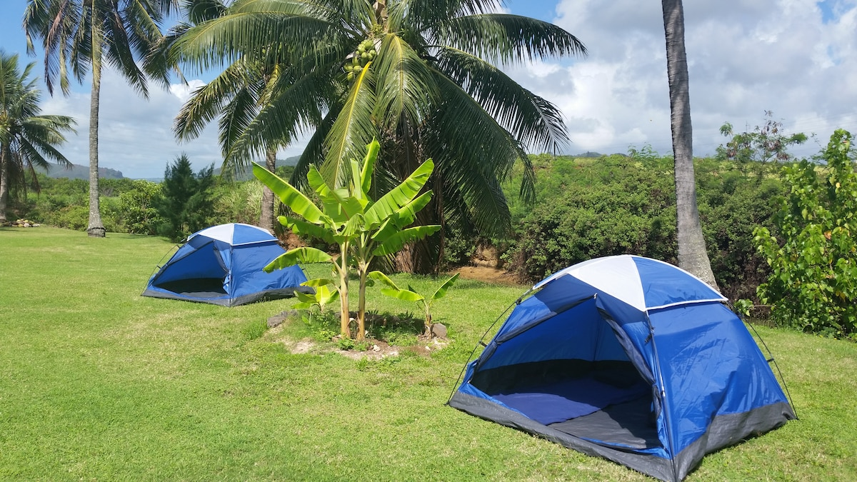 Kapaa Town Camp Ground. Clean, convenient, budget accommodation on Kauai.