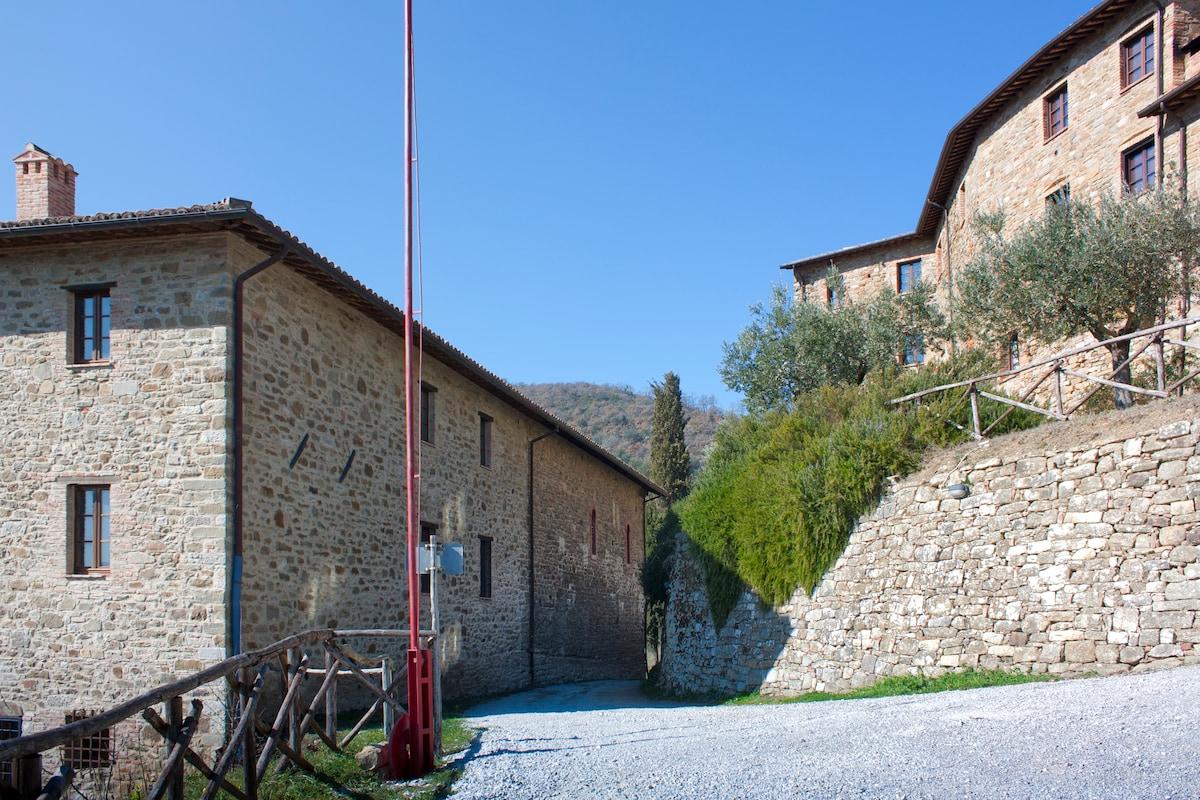 Castello di Gaiche, XI SECOLO
