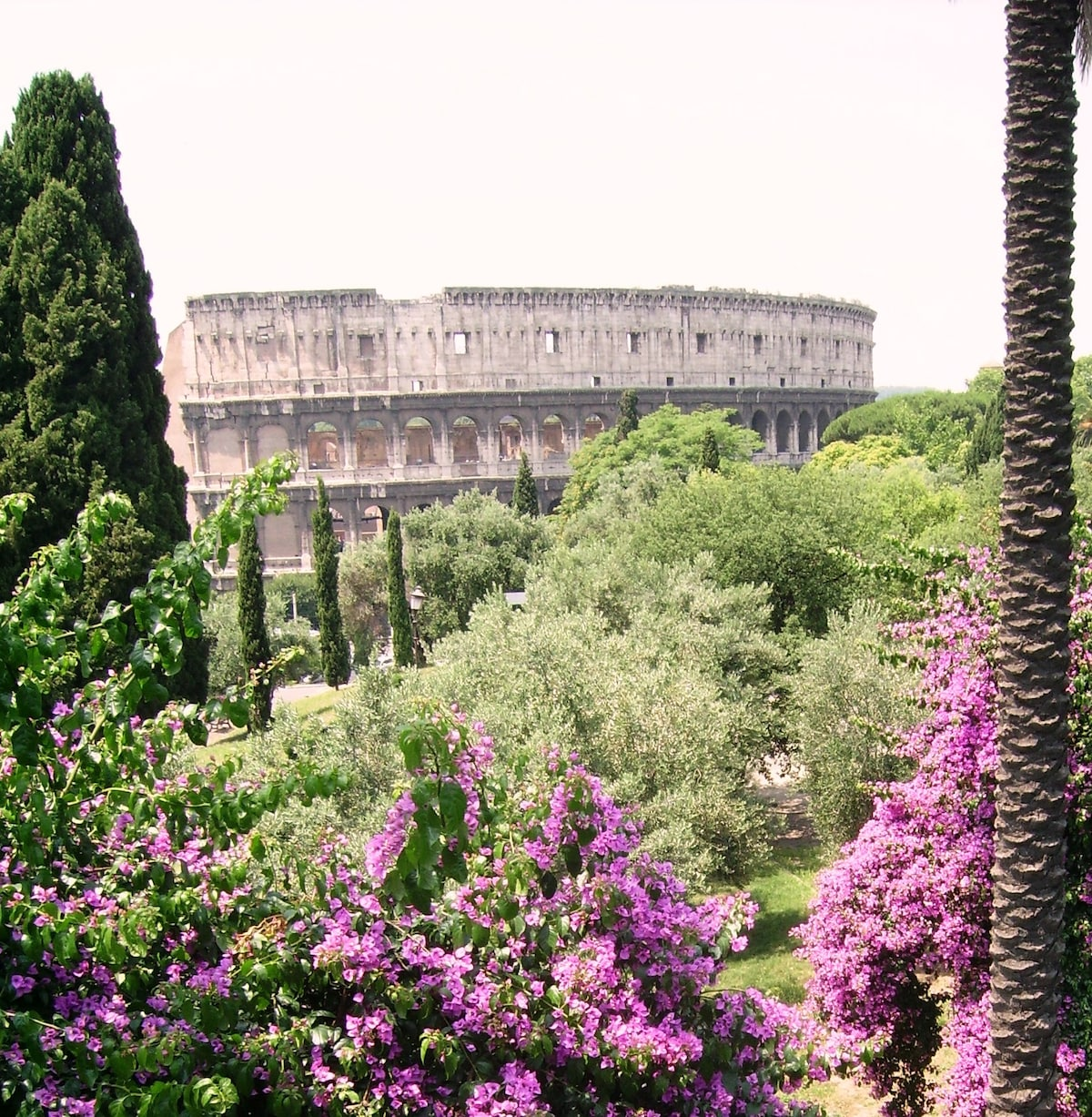 View of the Colosseum from the nearby Parco di Colle Oppio