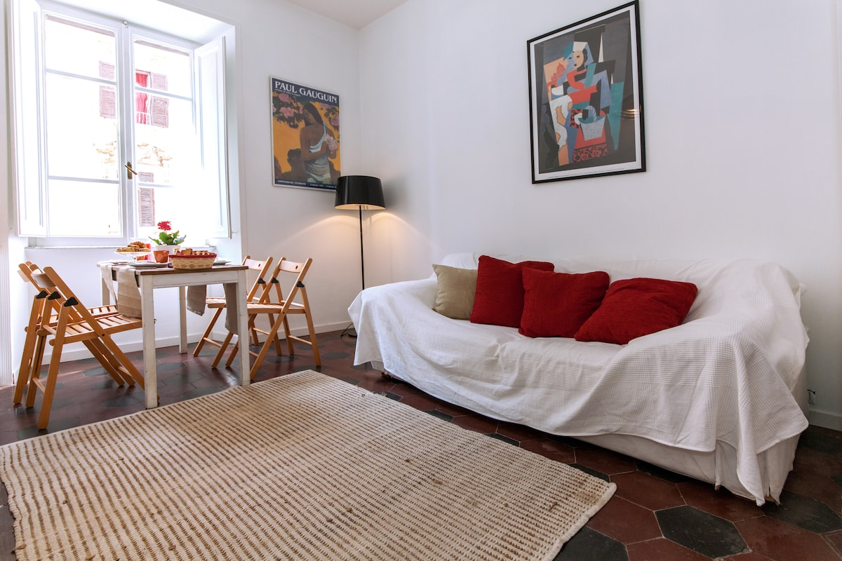 nice apartment at testaccio