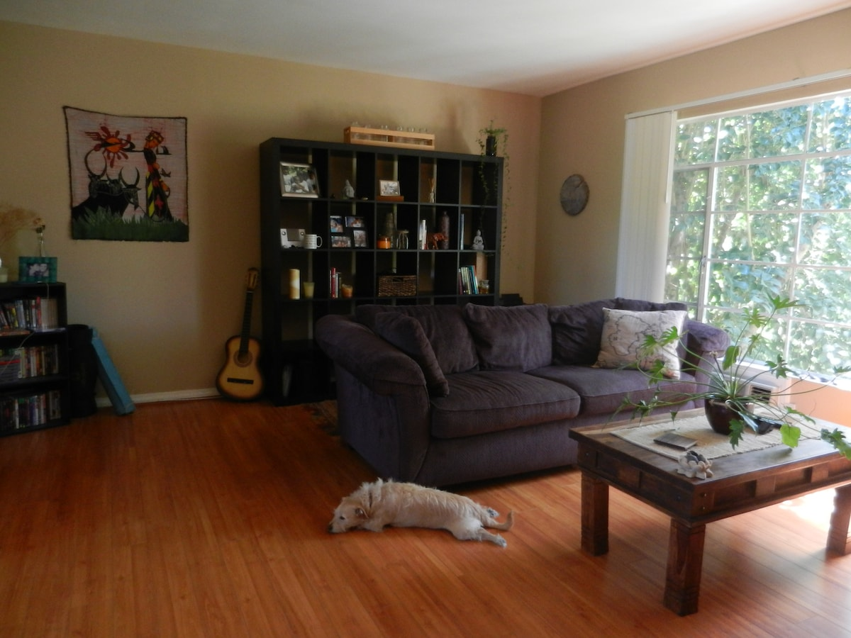 The large living room is flanked on one side by a wall of windows that overlook the garden and trees on the property.
