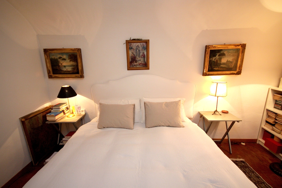 Cosy Nest in Oltrarno Florence