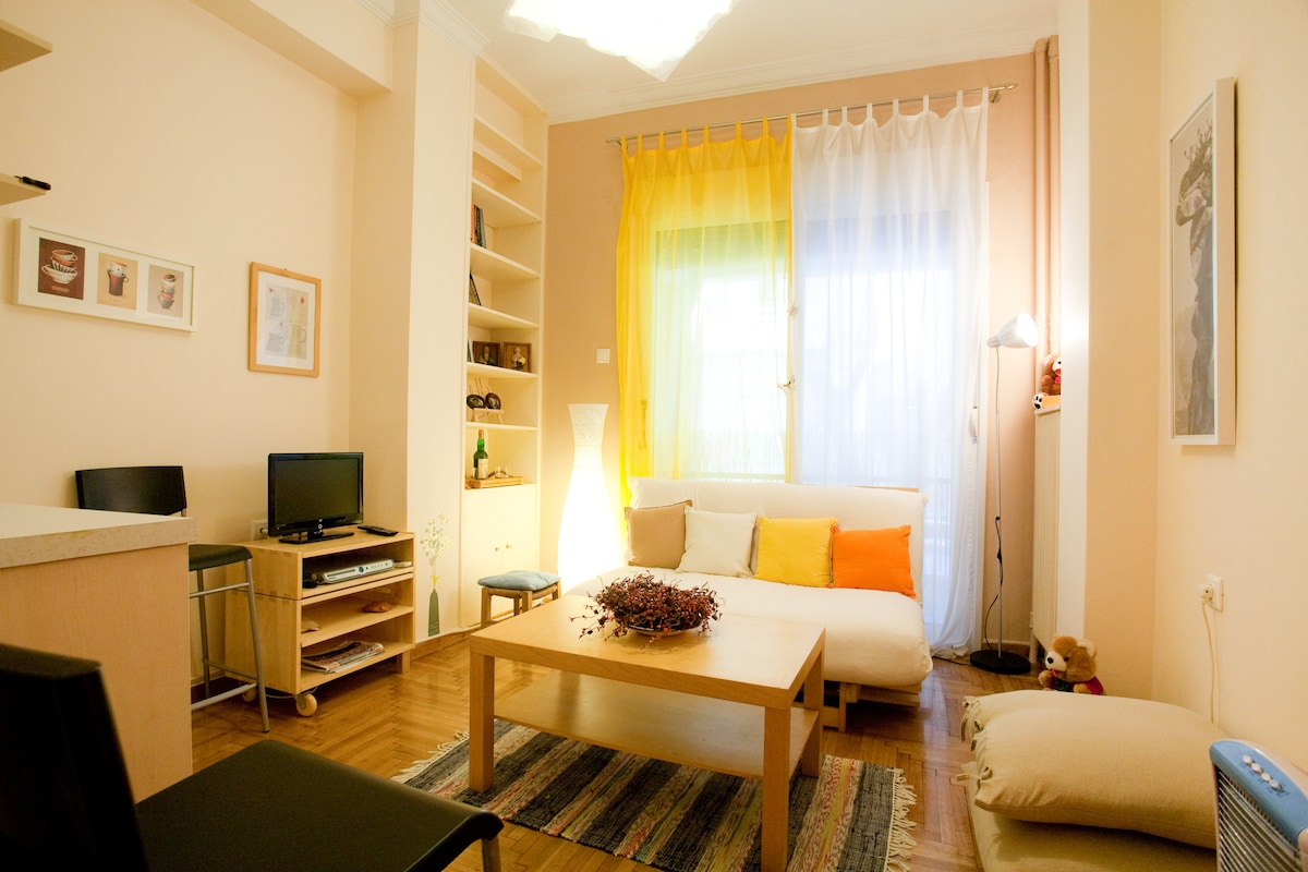 Cute, cozy apt., in heart of Athens