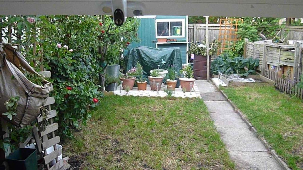 1 bed garden flat