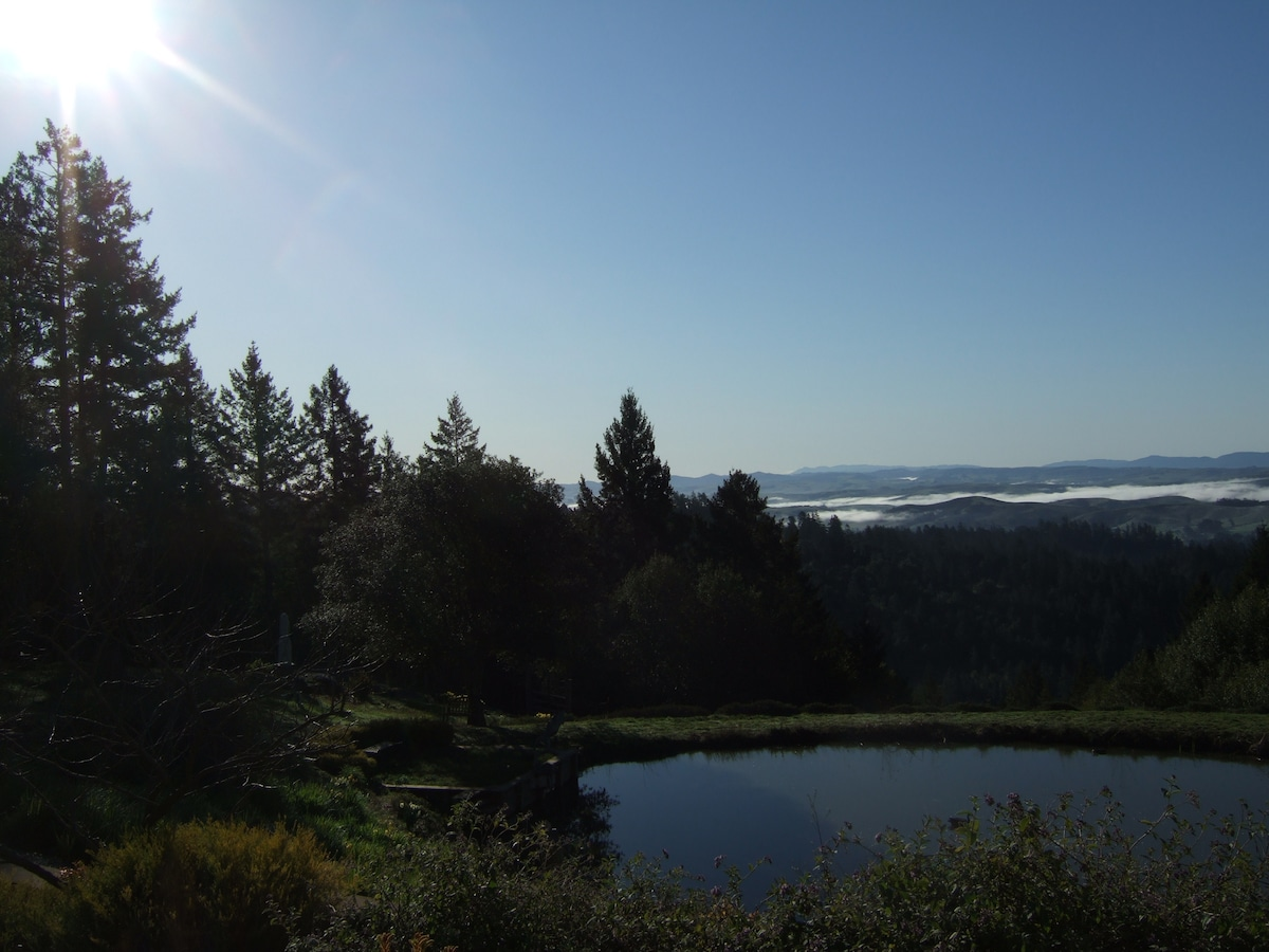 View of Mt. Tamalpais over the valley fog