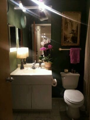 Private Bath with shower. Bathroom beautifully decorated with original art and live flowering plants.